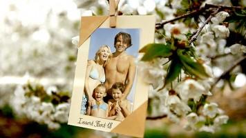 春挙式におすすめ!桜と写真のスライドショー